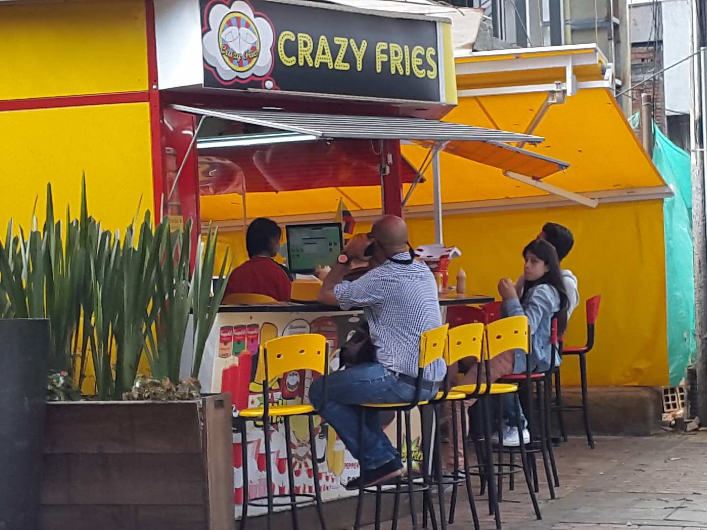 Crazy Fries
