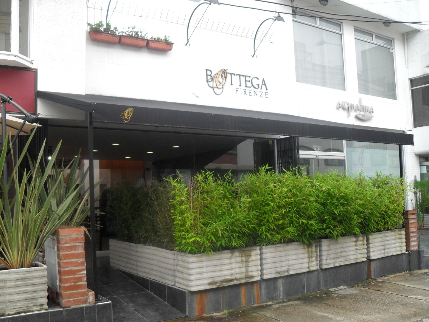 Bottega Firenze (Chico)